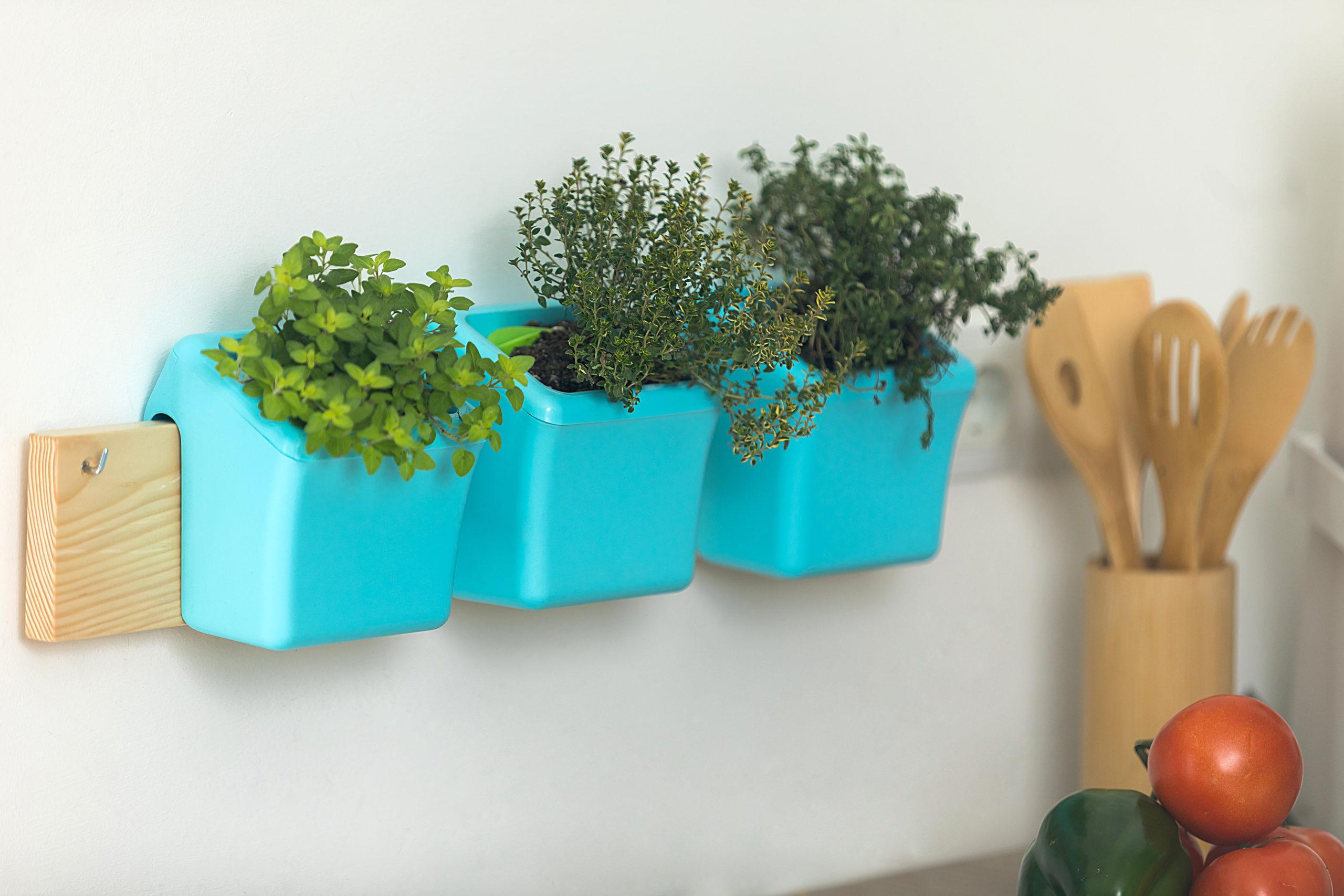 Gardening@Home Teil 3