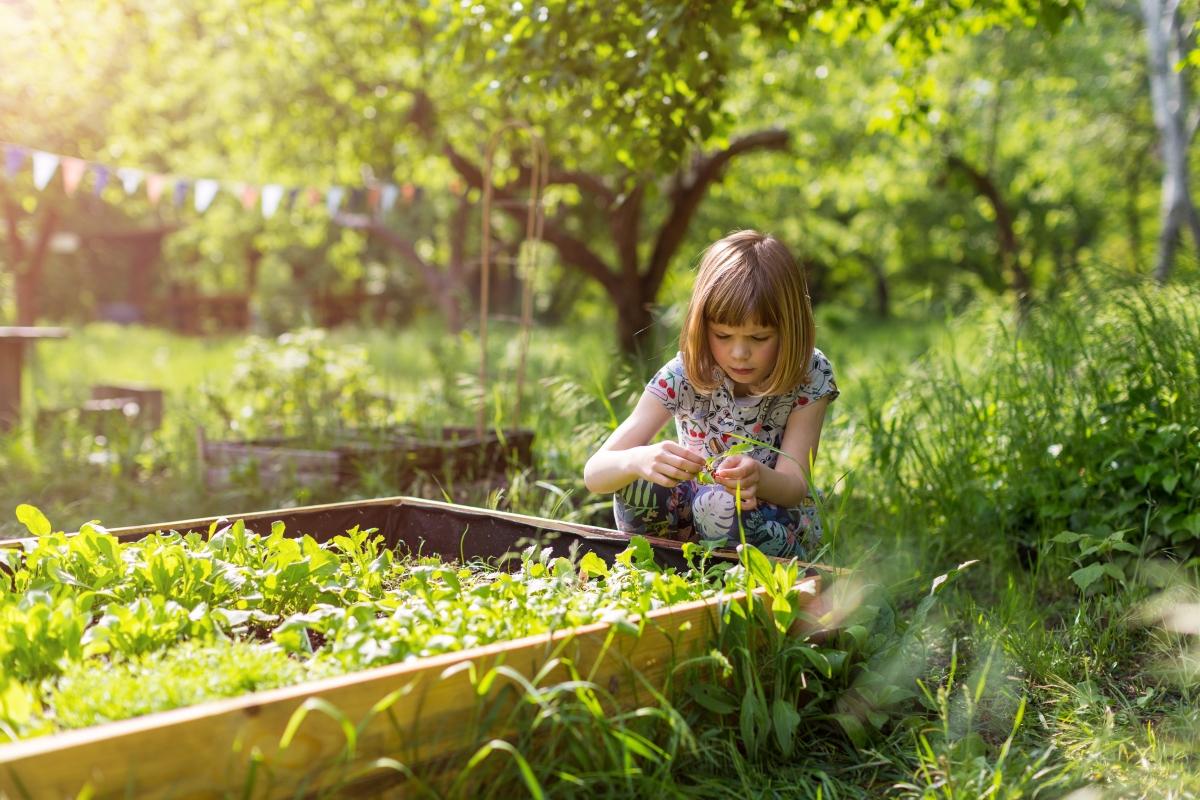 Gelebte Diversity – Urban Gardening